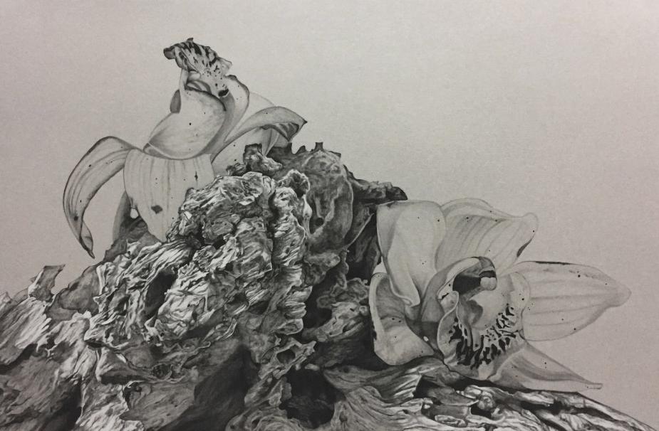 JustinLim_ThedriftprojectII-Innocence.1_2017_(series)graphite,charcoal,whitechalkandwhitecoalontonedpaper_H36xW51cm_$3600_02