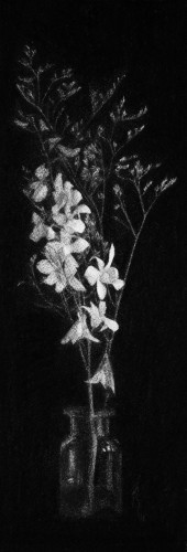 2018-Drawings_Orchids I_Charcoal on canvas_H37 x W12cm